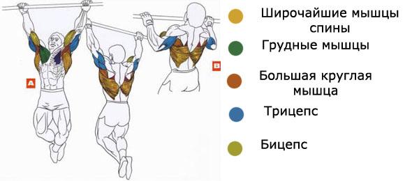 Накачивание мышц с помощью тренировок на турнике