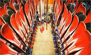 Катание на горных лыжах — как выбрать лыжи для начинающих?