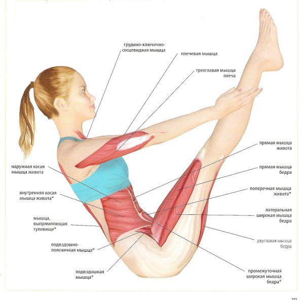 Упражнения для талии и боков — эффективность в действии